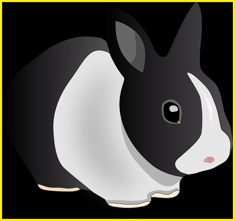 sketsa gambar kelinci berwarna hitam dan putih