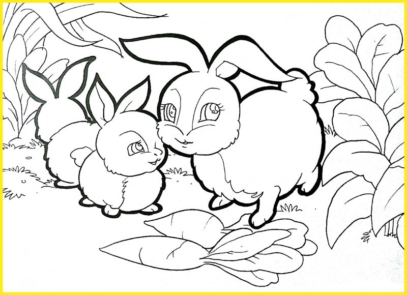 sketsa gambar kelinci di taman dan wortel