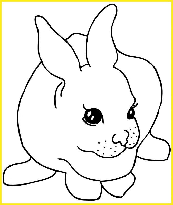 sketsa gambar kelinci hitam putih mulut bertutul