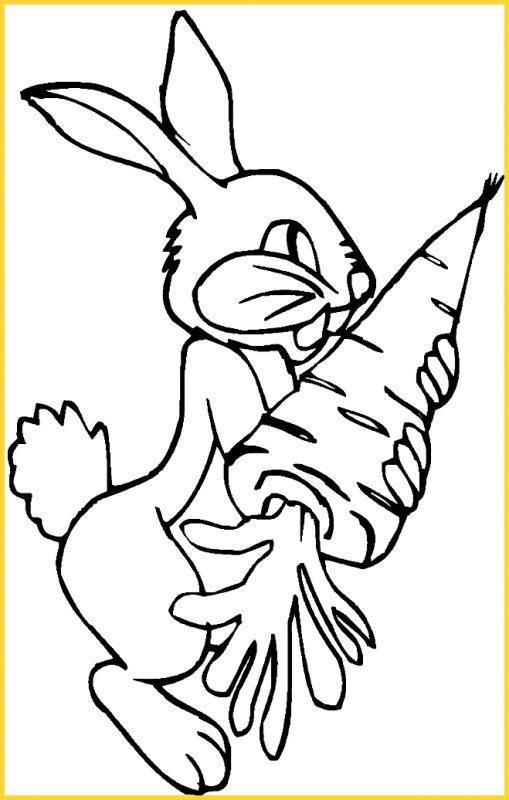 sketsa gambar kelinci makan wortel besar