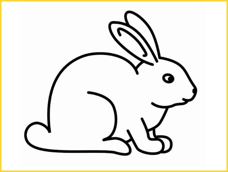 sketsa gambar kelinci mudah dan simpel