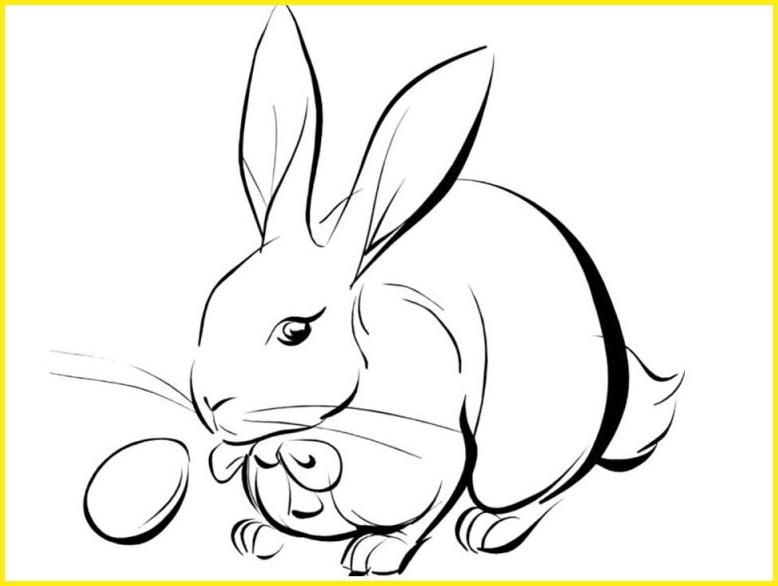 sketsa gambar kelinci sederhana dan bola