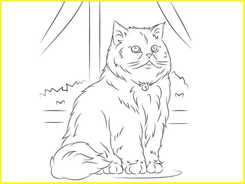 sketsa gambar kucing anggora berkalung lonceng