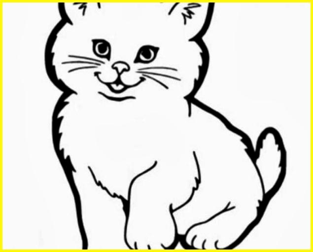 sketsa gambar kucing anggora kecil