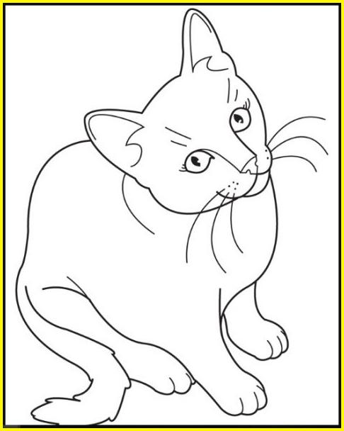 sketsa gambar kucing duduk keren