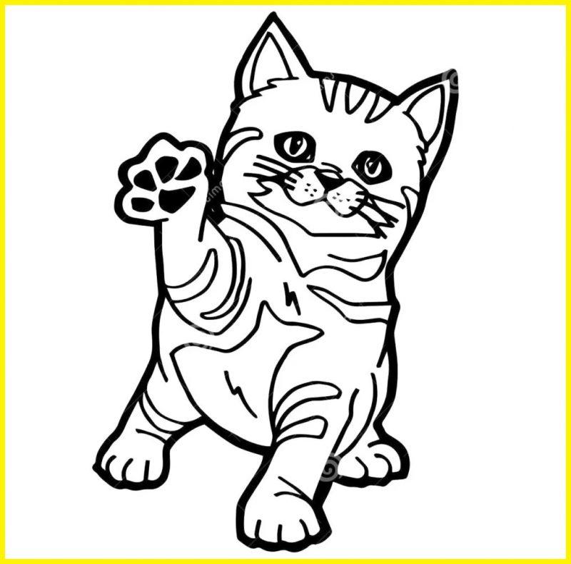 sketsa gambar kucing untuk anak tk berjabat tangan