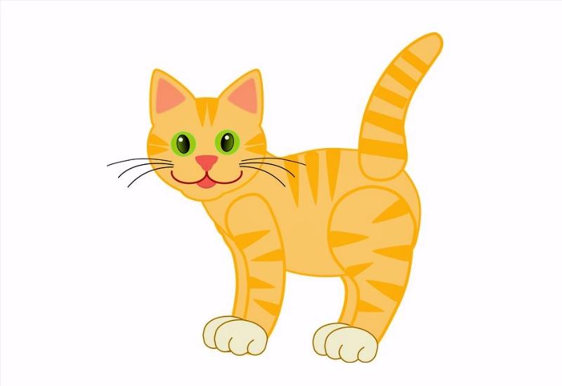 sketsa gambar kucing
