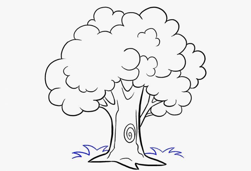 sketsa gambar pohon