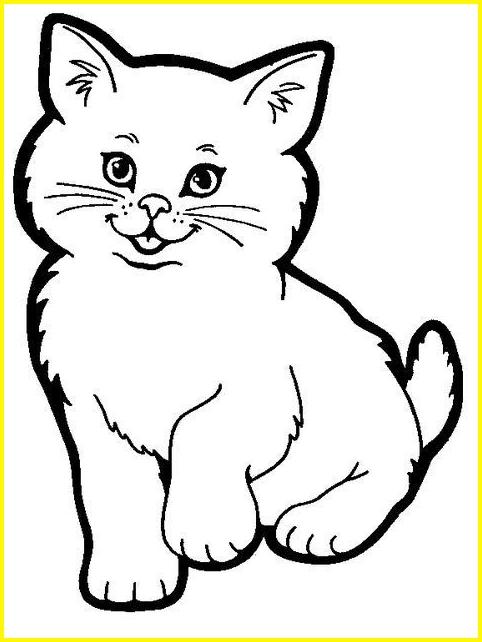 sketsa kucing mudah kucing chubby