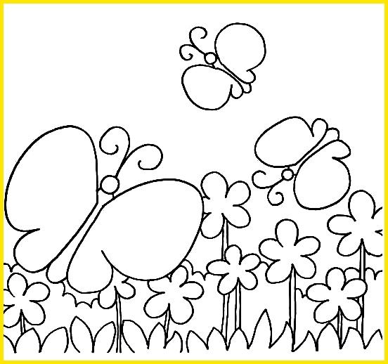 sketsa kupu kupu sederhana