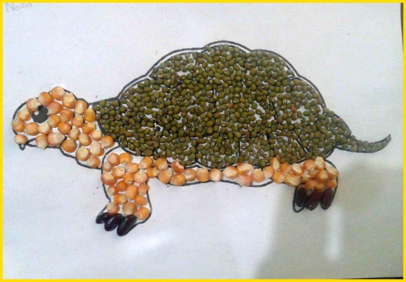 sketsa kura kura dari biji bijian