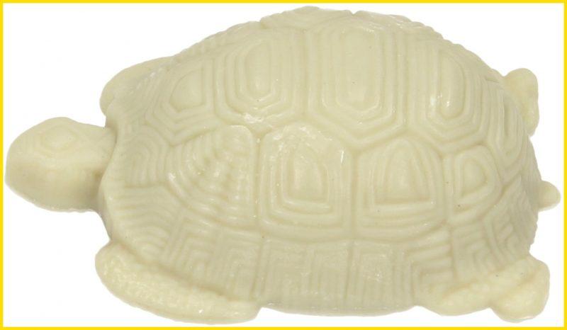 sketsa kura kura dari sabun background putih