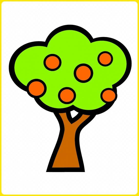 sketsa pohon jeruk