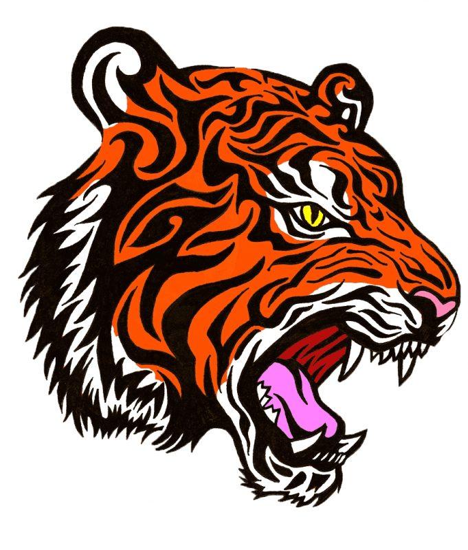 gambar kartun harimau berwarna