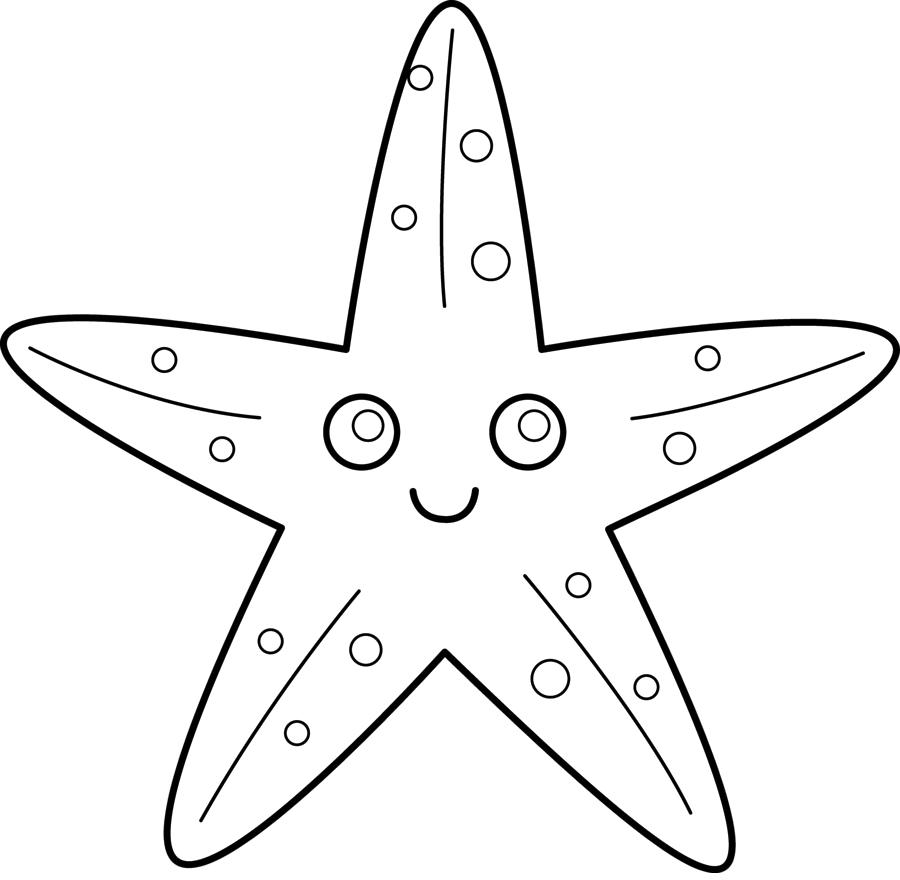 sketsa bintang laut