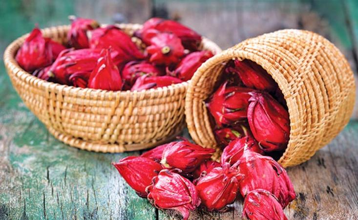 Kerajinan dari serat tumbuhan Serat Rosella